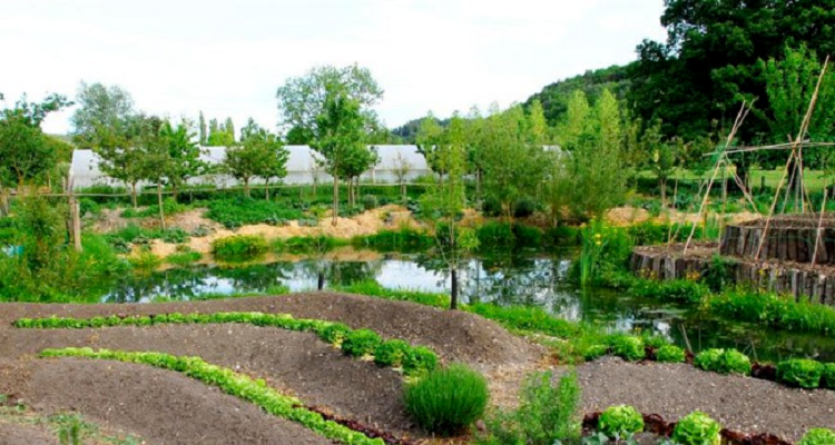 Serie Permaculture Bec Hellouin