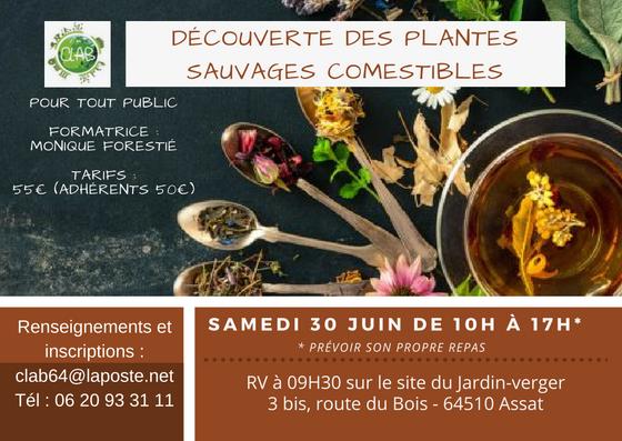 Conervatoire des Légumes Anciens du Béarn (64)